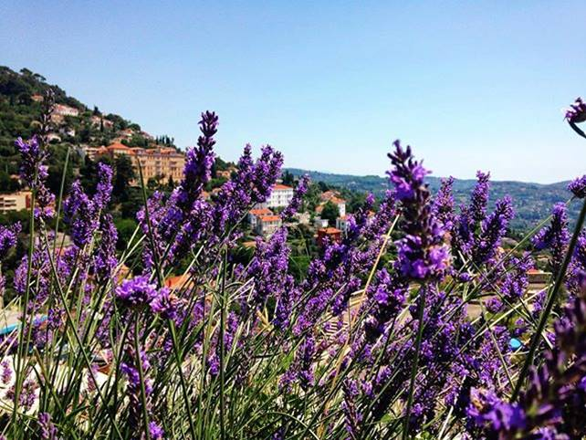 Grasse, The Capital Of Perfume